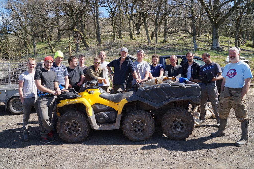 woodland planting team