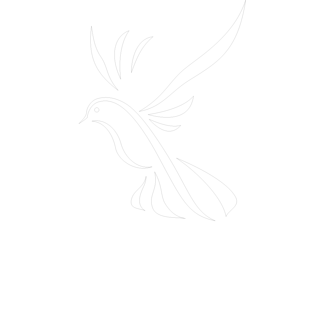 Dovetail Scotland – bespoke woodwork and more